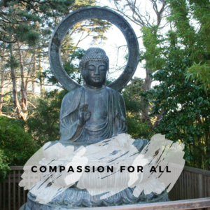Compassion for all @ Nyima Tashi Kagyu Buddhist Centre | Auckland | Auckland | New Zealand
