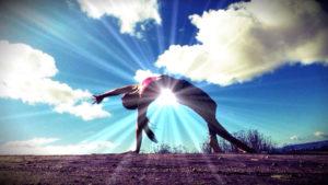 Evolve - Fascia and Anatomy Workshop @  Ashram Yoga  | Auckland | Auckland | New Zealand