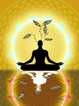 7 Day Silent Meditation Retreat @ Anahata Yoga Retreat | Clifton | Tasman | New Zealand