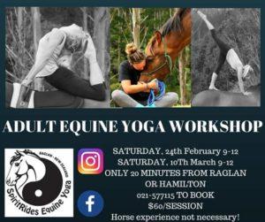 SpiritRides Raglan Equine Yoga Workshop @ SpiritRides Raglan | Raglan | Waikato | New Zealand